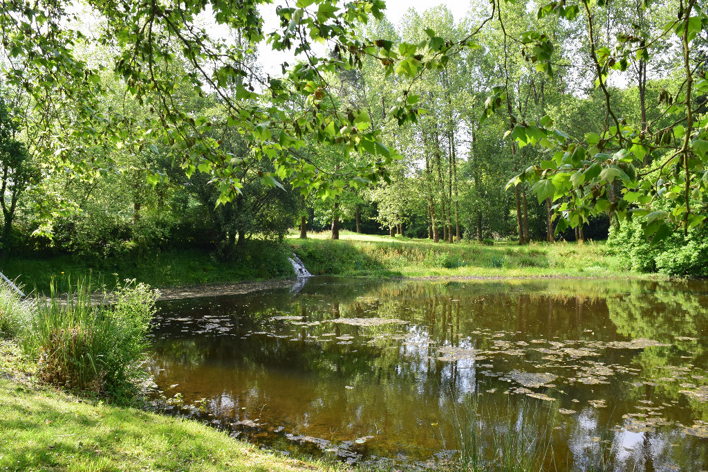 For sale mill with ponds finist re brittany moulin for Ponds for sale